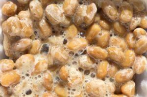 発酵食品・納豆